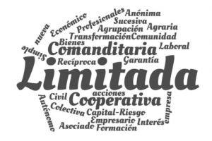 Tipos De Sociedades Formas Jurídicas Y Sus Características