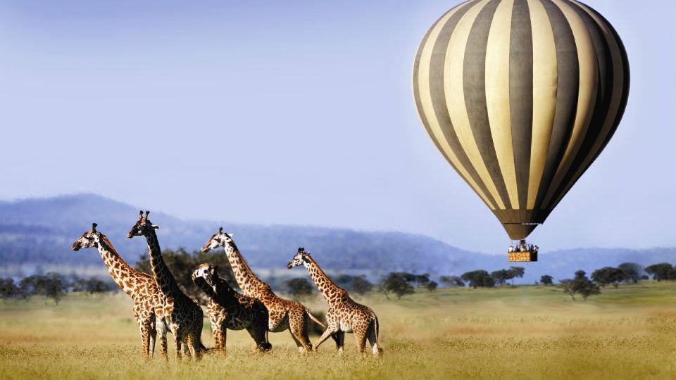 Una agencia de viajes especializada en aventuras de lujo